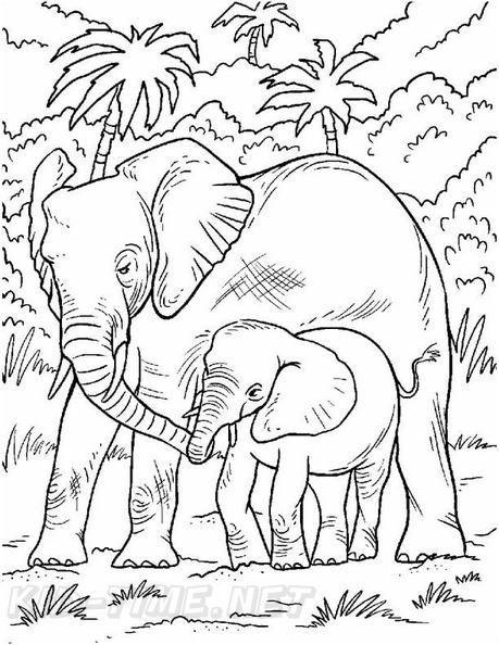 Cartoon Elephant coloring page | Free Printable Coloring Pages | 594x459