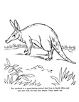 Aardvark Coloring Book Page