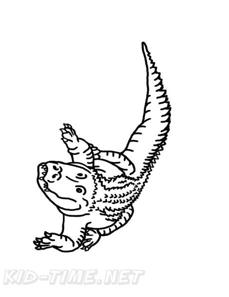 Alligator Coloring Book Page | Free Coloring Book Pages Printables