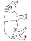 Anteater Coloring Book Page