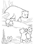 Black Bear Coloring Book Page