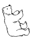 Kermode Bear Coloring Book Page