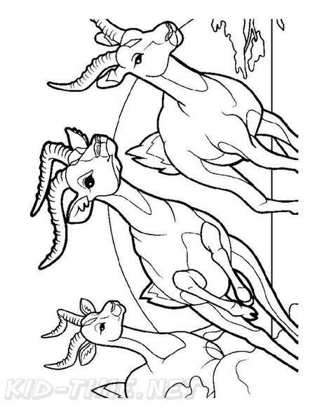 Bighorn Sheep Ram Coloring Book Page | Free Coloring Book ...