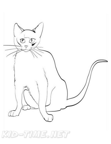 Bombay_Cat_Coloring_Pages_005.jpg