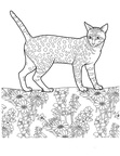Egyptian Mau Cat Breed Coloring Book Page