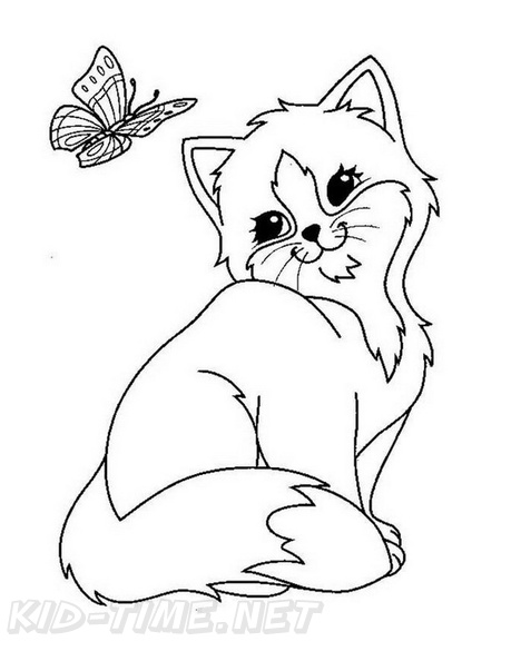 Colouring Book Australian Animals | Kitty coloring, Disney ... | 594x459
