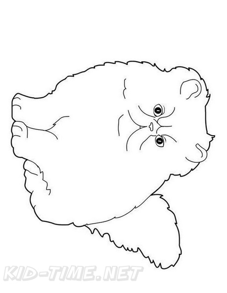 Big Cat Coloring Pages | 594x459