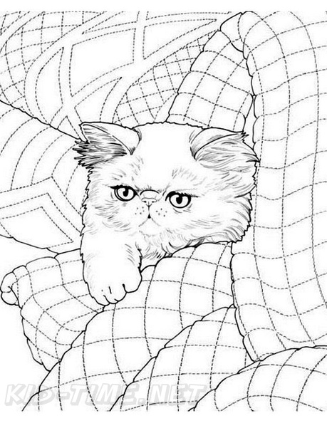 - Persian Cat Breed Coloring Book Page Free Coloring Book Pages Printables