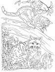 Realistic Cats Coloring Book Page