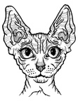 Sphynx Cat Coloring Book Page