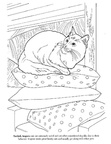 Turkish Angora Cat Breed Coloring Book Page