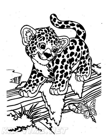 Cheetah Coloring Book Page Free Coloring Book Pages Printables