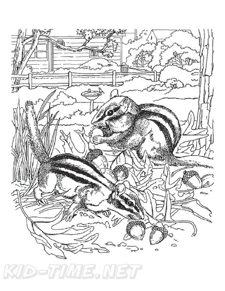 Chipmunk Coloring Book Page | Free Coloring Book Pages ...