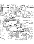 Deer Coloring Pages 034