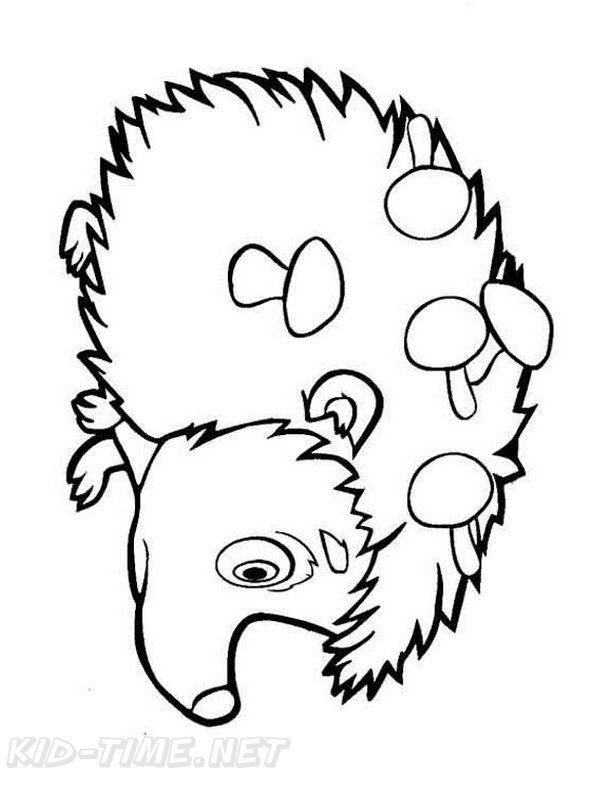 Hedgehog Coloring Book Page