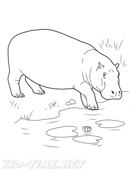 Hippo_Coloring_Pages_003.jpg