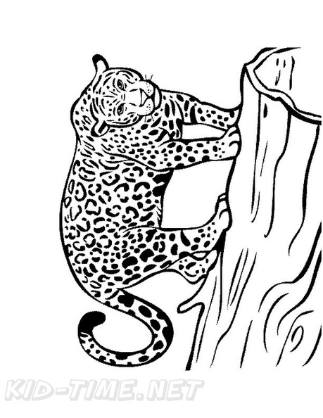 Jaguar Coloring Book Page Free Coloring Book Pages Printables