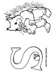S Squirrel Animal Alphabet Coloring Book Page